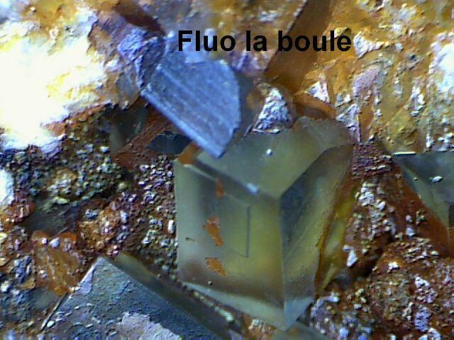 fluo la boule 2_640x480.jpg