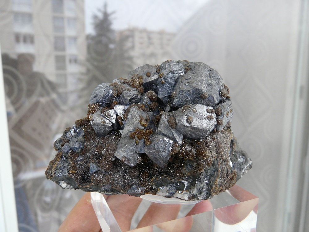 Galène sur Sphalérite (Var. de Blende), Mine de Trèves, Cévennes, Gard, Languedoc Roussillon, France.