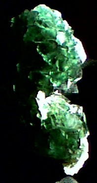 post-1310-1169380399_thumb.jpg