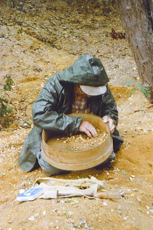 post-1992-0-54776300-1330537769_thumb.jp