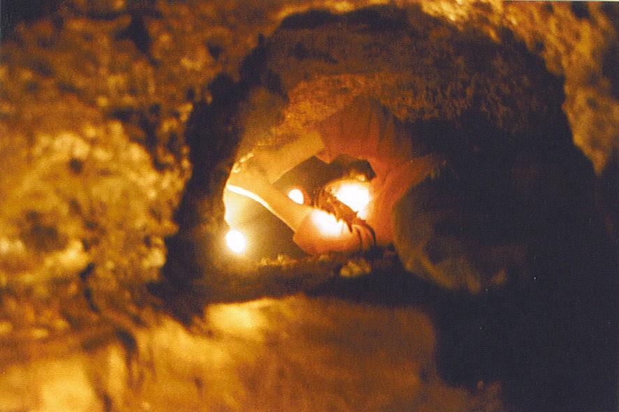 post-1992-0-77571900-1330536651_thumb.jp