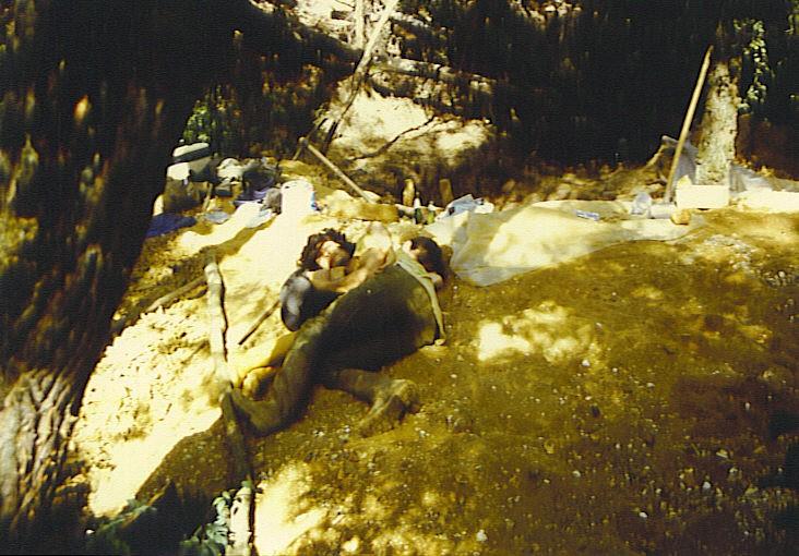 post-1992-0-79224700-1330541524_thumb.jp