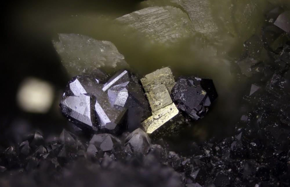 1408 sphalérite, pyrite, galène FOV2,5mm 10x CZP13.jpg