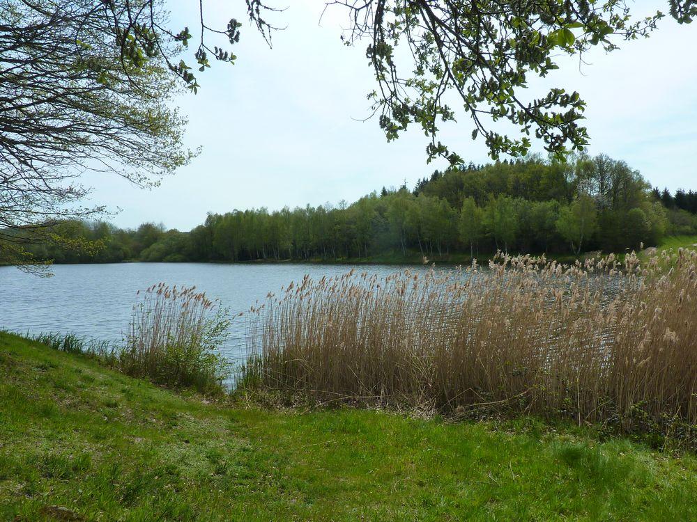 Lac de Chamboux 018.jpg