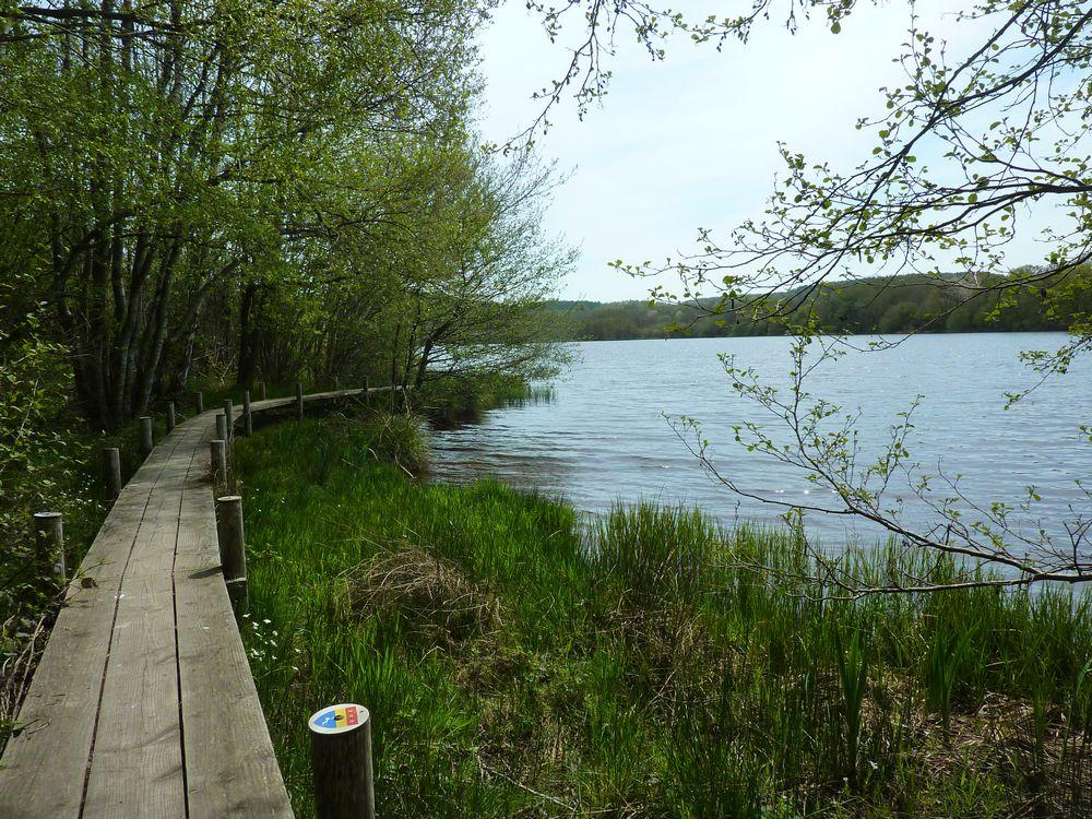 Lac de Chamboux 026.jpg