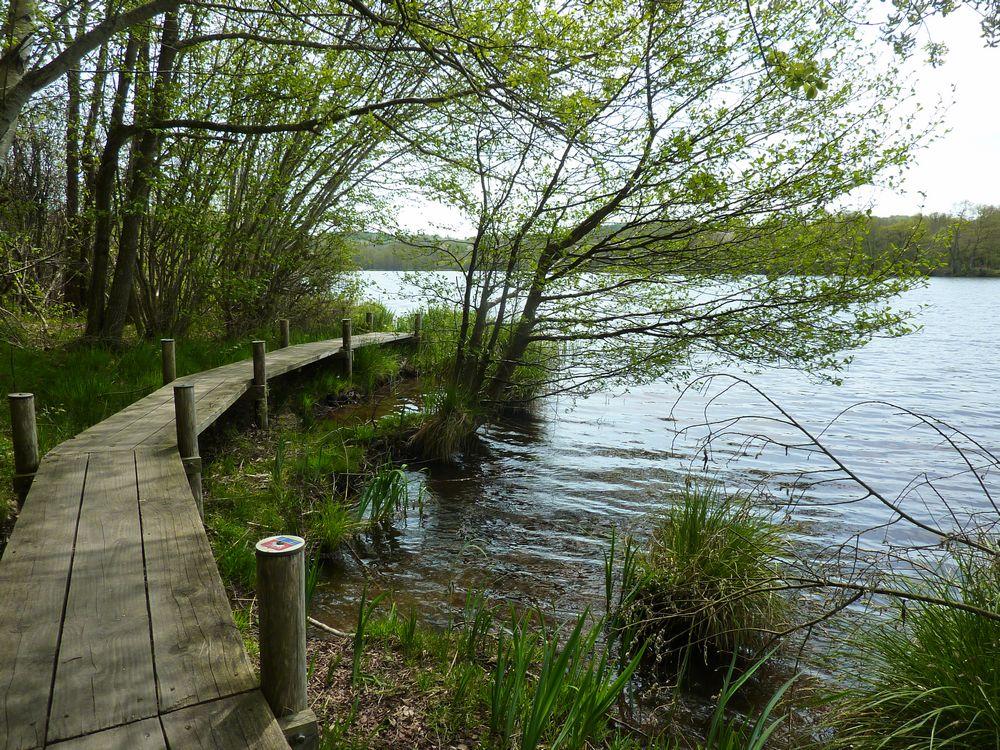 Lac de Chamboux 027.jpg
