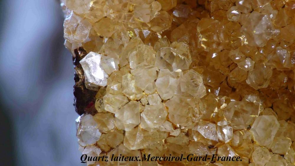 Quartz -de Mercoirol Gard-France.jpg