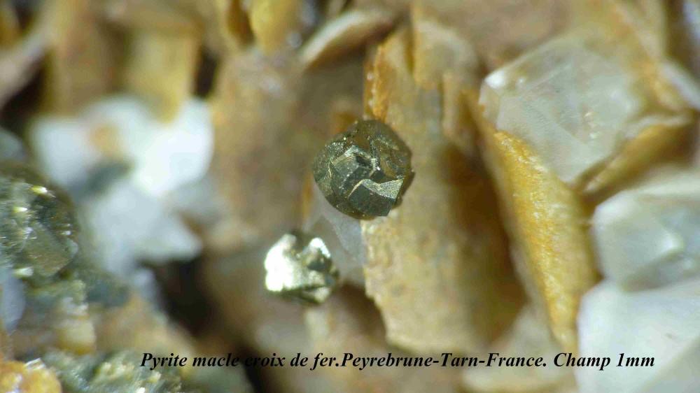 PYRITE CROIR DE FER.jpg