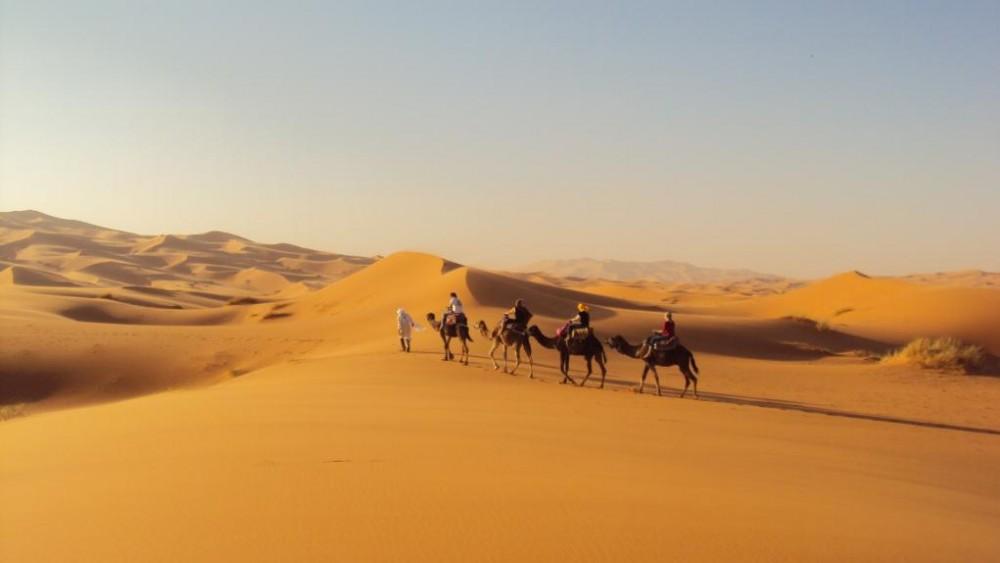 CamelTrekking (2).JPG