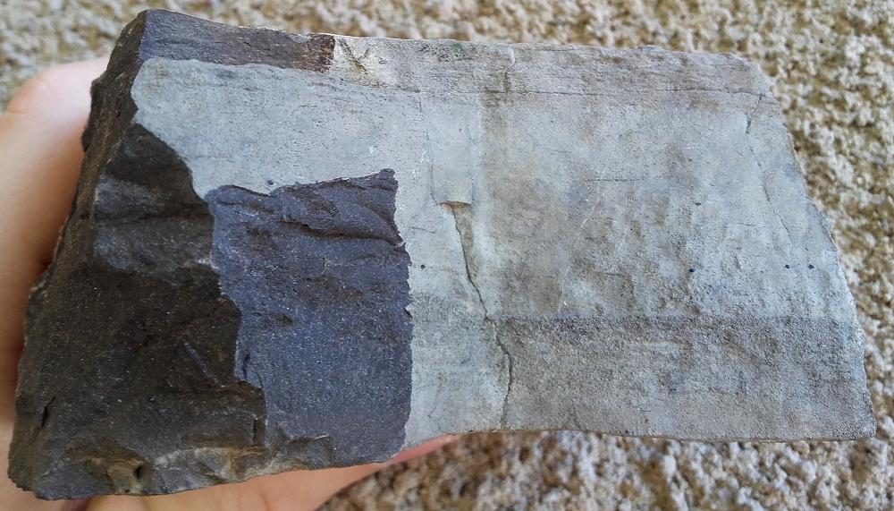 DFCI calcaire bitumineux gréseux.jpg