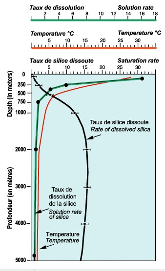 dissolution silice.jpg