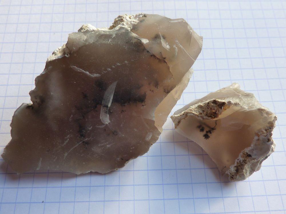 dendrites silex 1.JPG