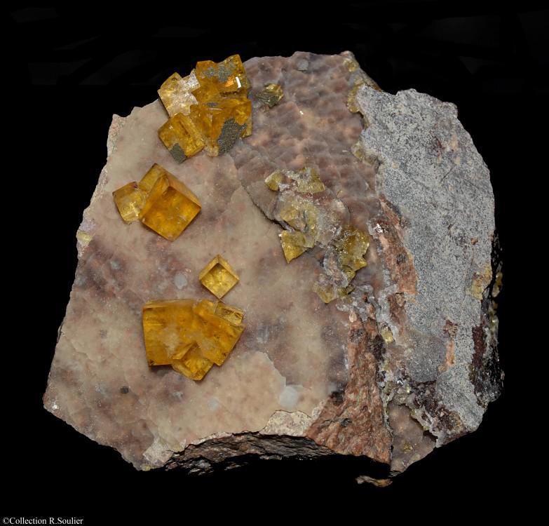 Fluorine (9x8.5cm) Vensat (63).jpg