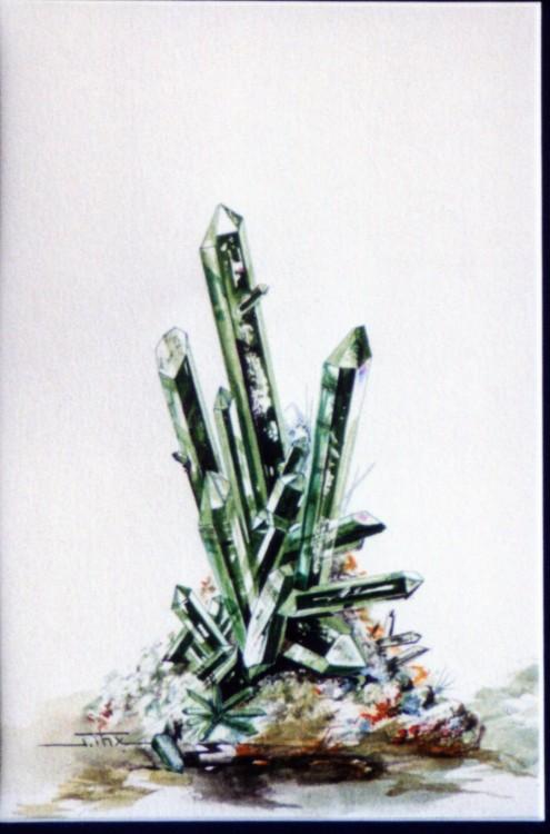 QUARTZ Chloriteux sceptre Oisans.jpg