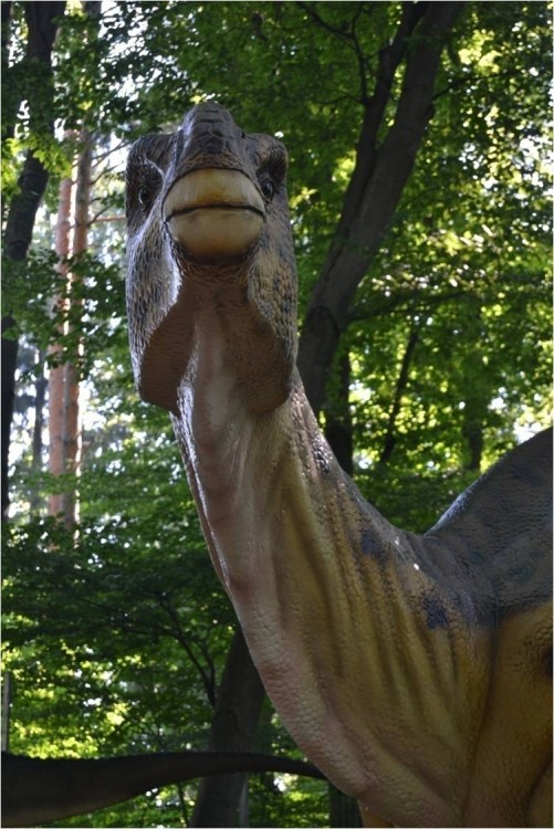 iguanodon gros plan.jpg