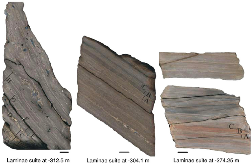 Fig-6-Photos-of-the-three-studied-laminae-successions-selected-for-the-detailed-organic.png