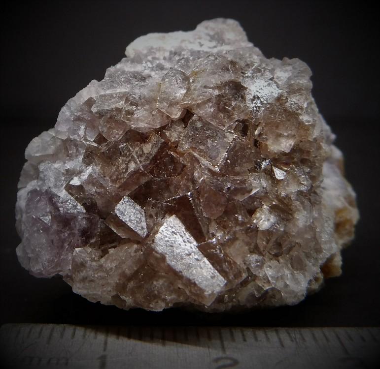 593bf9e4151c8_(3)43-Fluorine-Sortiedu14-Avril-2017lamineduReingeLesmolrats.(SaneetLoire).thumb.jpg.026d657f5606493c9aa4777a01410035.jpg