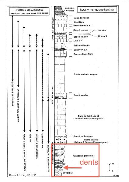 0317_Geologie_sortie_Lutetien_Oise_coupe_424_600.jpg