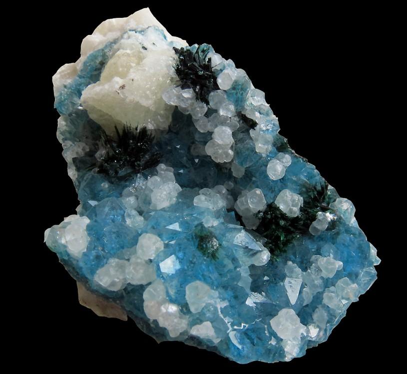 blueqz (2).jpg