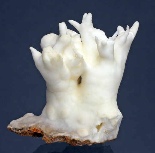 Aragonite-Smam-1.jpg.71f5f23f50ea7b921985b8219b6d4450.jpg