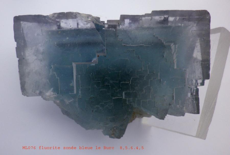 fluorine-burc-tarn.jpg
