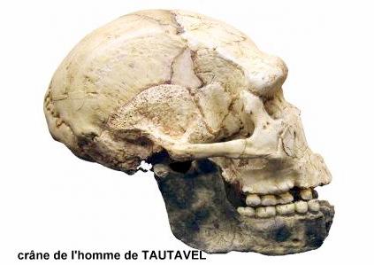 1-497-musee-de-la-prehistoire-tautavel-gd.jpg