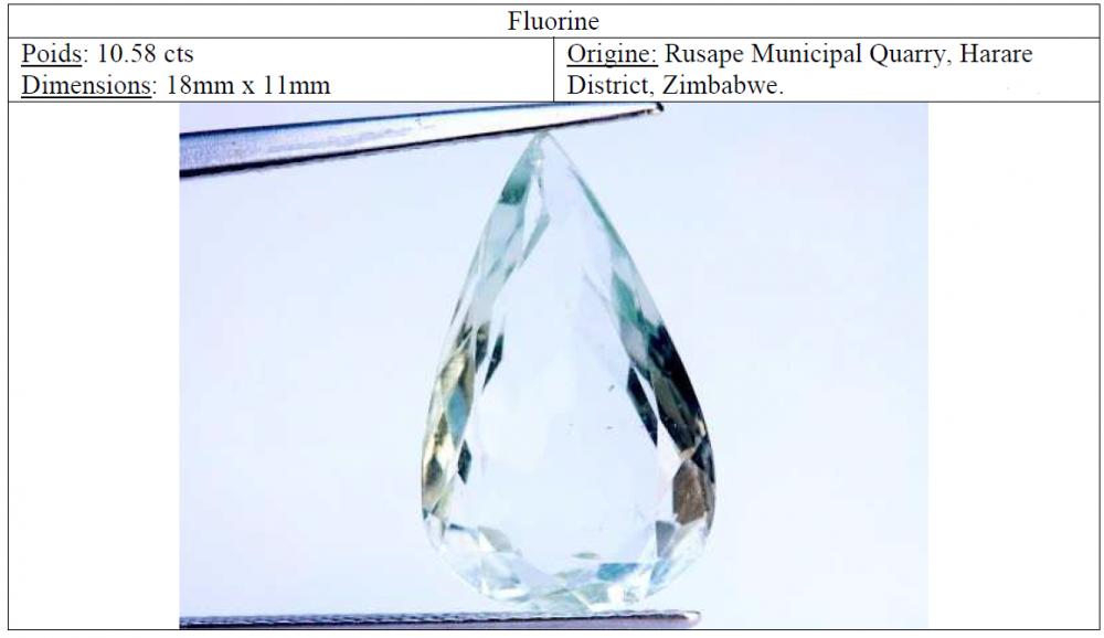 fluorine.thumb.png.f30d368e2540b086949c9ed6a316f68b.png