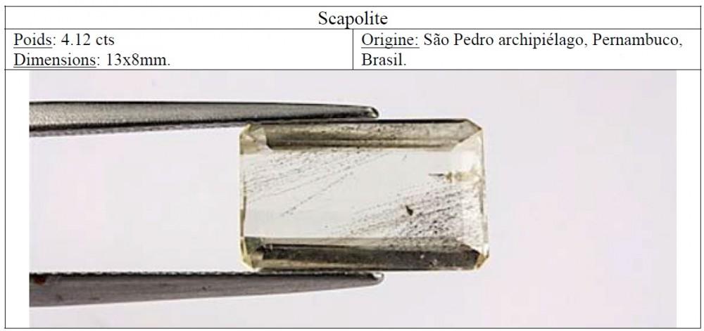scapolites.thumb.jpg.6324a6804f89c40098ff6eaa9f458200.jpg