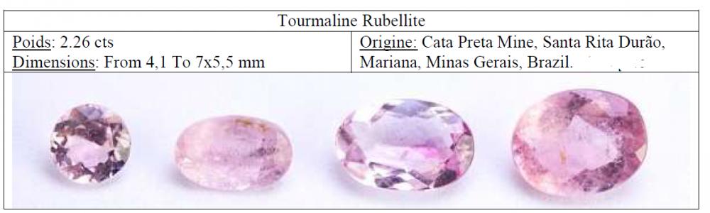 tourmaline.thumb.png.f635146c5b2a7f1ea657ff10f1ddb272.png