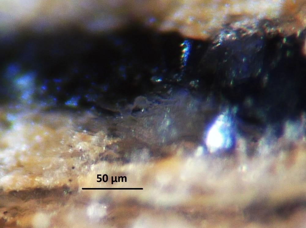 5a9577f42c596_Hot-spring-deposits-N6-siliceous-sinter-laminae-Franceville-basin-Gabon-35.thumb.JPG.c976e2c8bd2a6a623c3565cbb4a5c3af.JPG