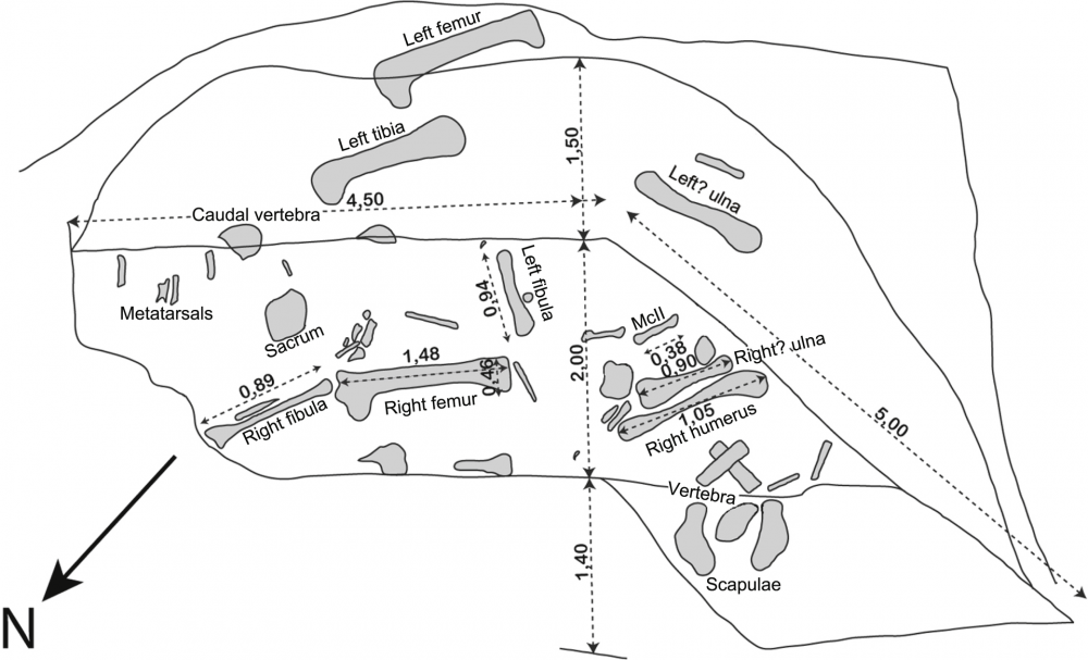Excavation_plan_of_Vouivria.png