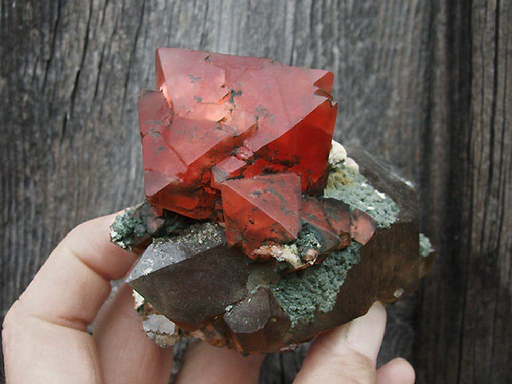 -fluorine-rouge-rose-chamonix-mont-blanc.jpg