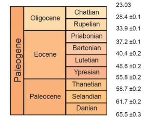 0506_Geologie_sortie_Saint_Gobain_Paleogene_306_250.jpg.364e27149e3fdbbf685acda476e01292.jpg
