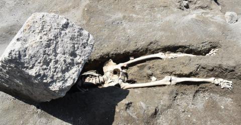 squelette.jpg
