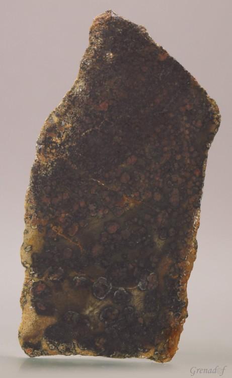 amphibole a grenat1.JPEG
