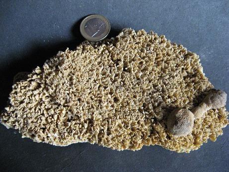 aragonite-falaise-vaches-noires-villers-sur-mer-houlgate-calvados-normandie.jpg
