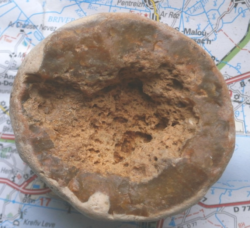 fosil1Web.thumb.jpg.d6b8c8b18c7d52d2193ee848056e17ca.jpg