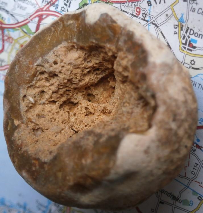 fosil1bWeb.thumb.jpg.97e6f633a1f0c944b483bfd7da6f2eb5.jpg