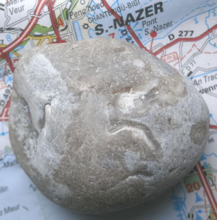 fosilKWeb1a.thumb.jpg.bc733f59ffdd0f6321d3acab29af9207.jpg