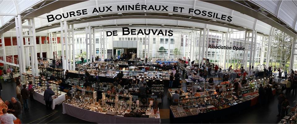 -bourse-mineraux-fossiles-beauvais-geologie.jpg