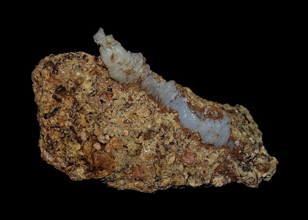 344284015_Lussatite(4x2.5cm).thumb.jpg.d2a79cb8b7ce8117a4ff536312f19a7e.jpg