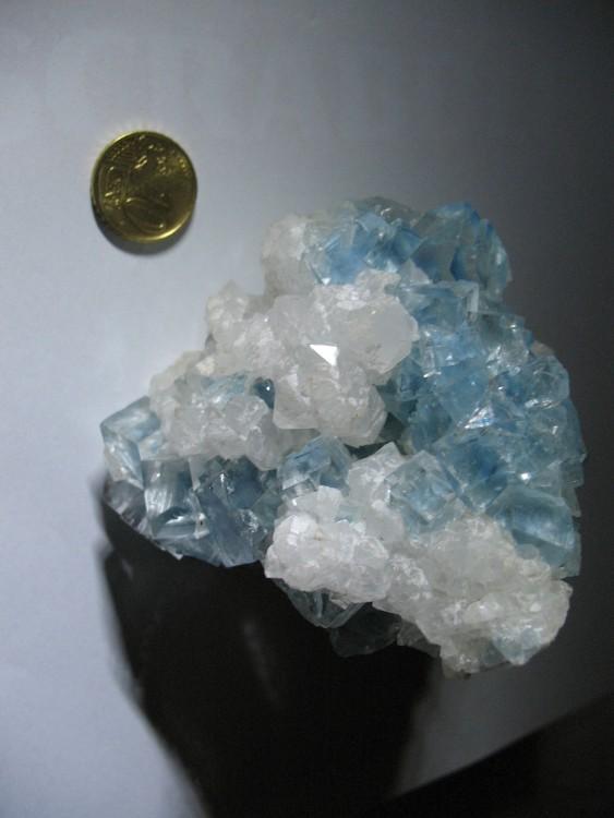 Fluorine du Burg 6.JPG