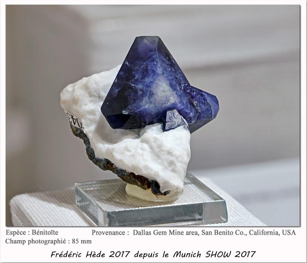 munich2017-006.jpg