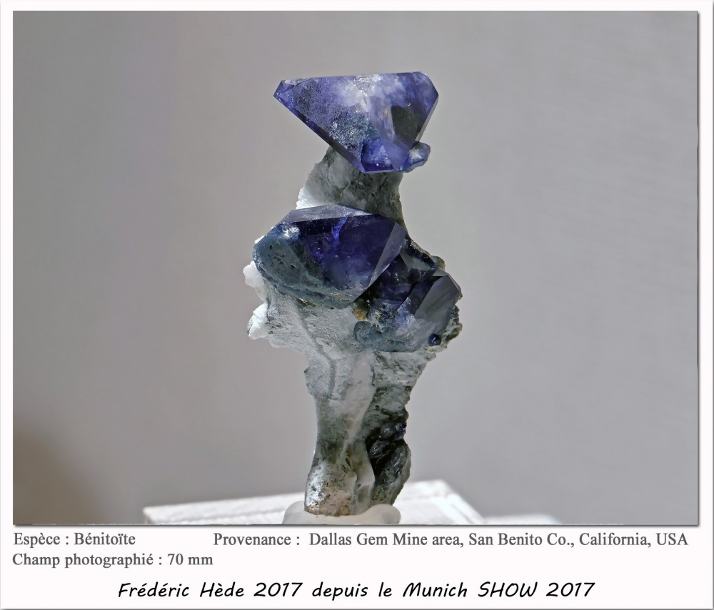 munich2017-007.jpg