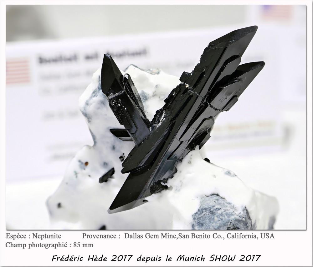 munich2017-012.jpg