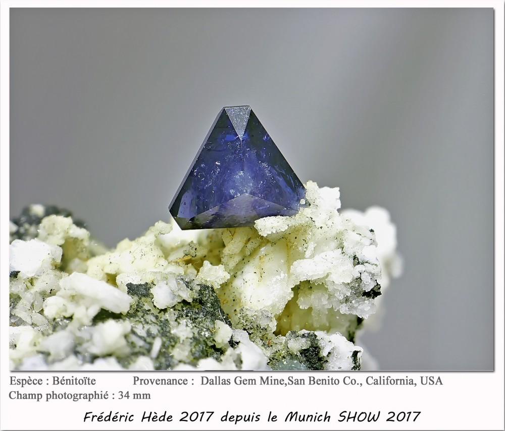 munich2017-014.jpg
