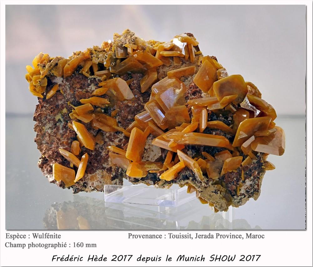 munich2017-035.jpg