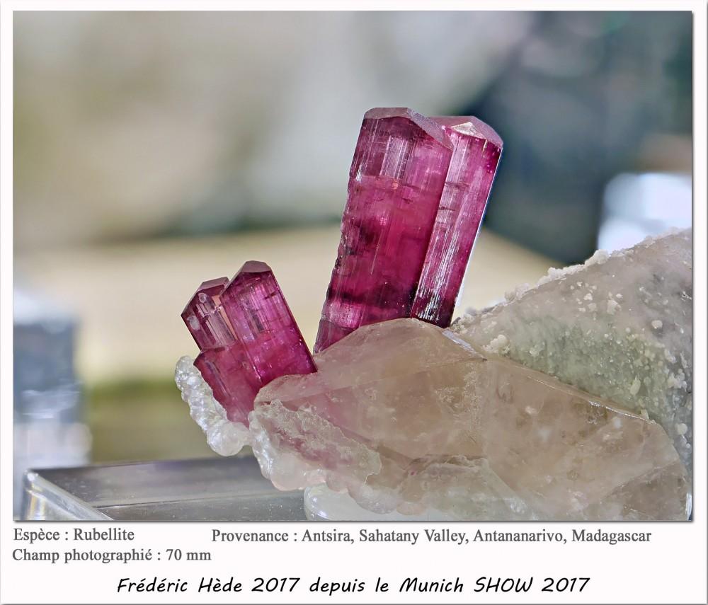 munich2017-042.jpg