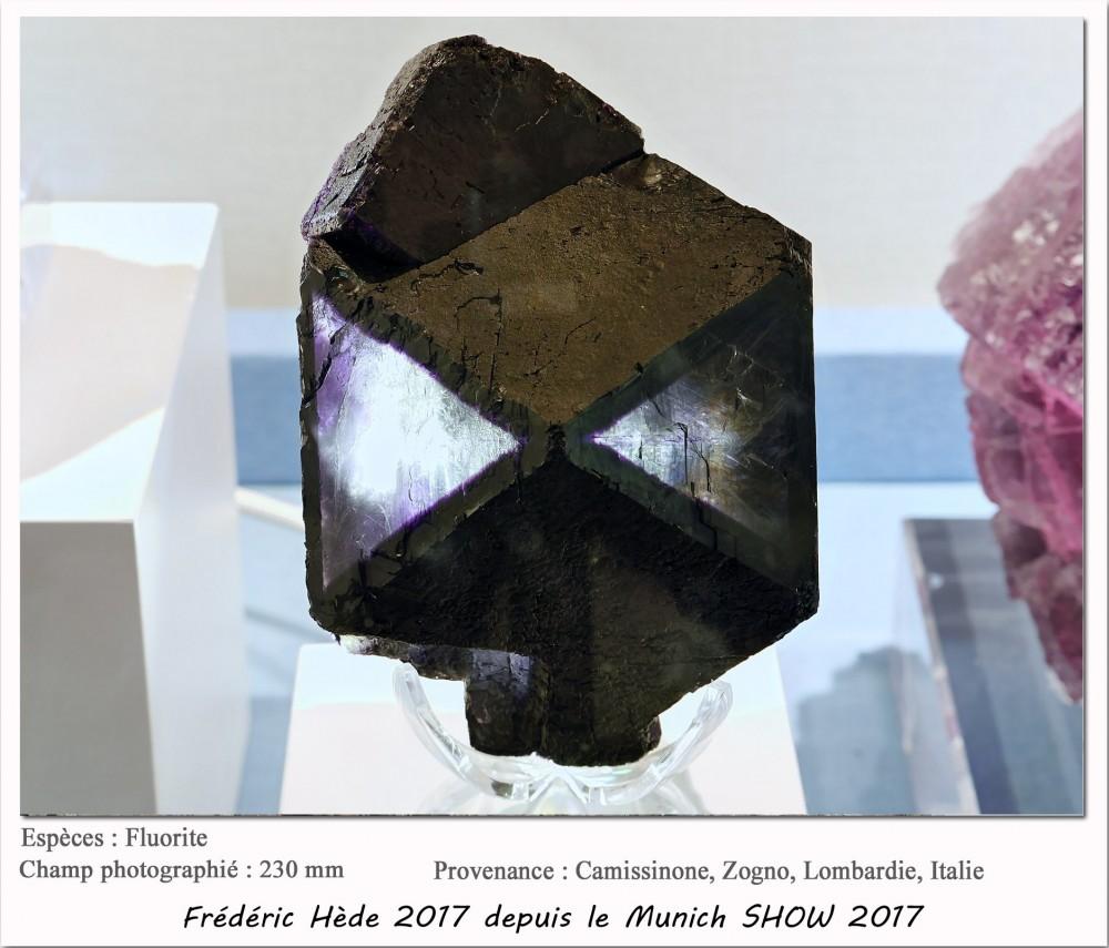 munich2017-056.jpg