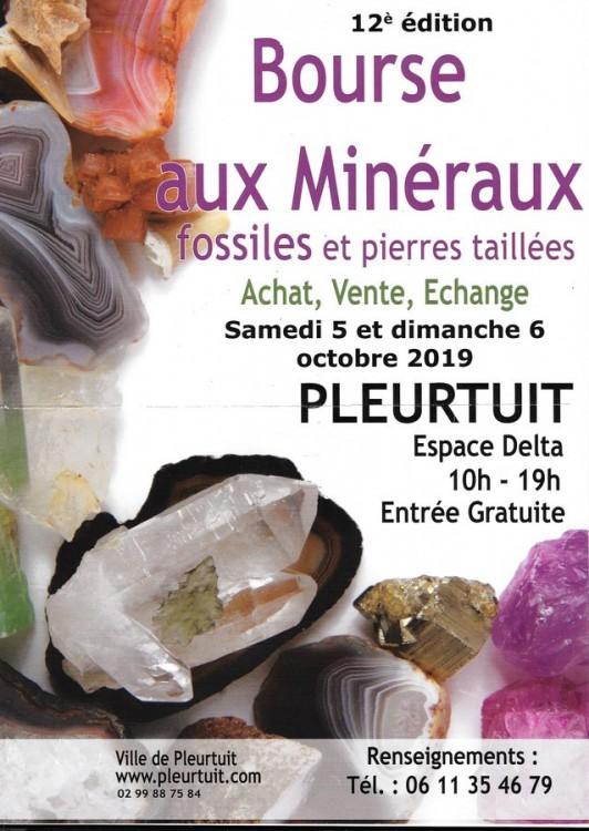 bourse de Pleurtuit (Copier).jpg